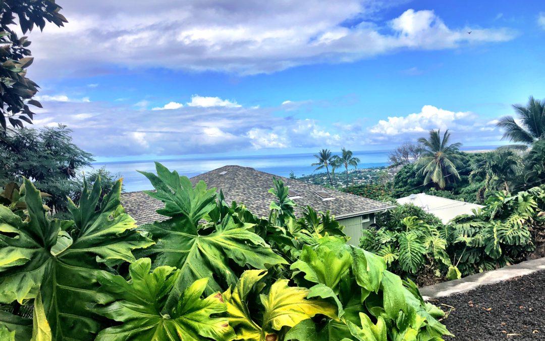 West Hawaii Real Estate Market Update-August 2021